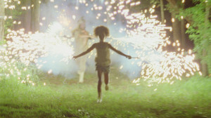 "The fireworks scene from ""Beasts of the Southern Wild."""